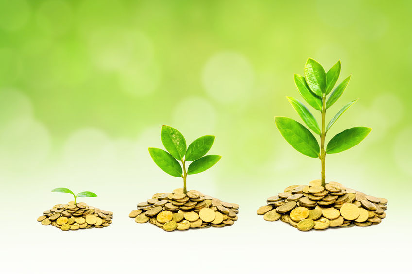 Three ways your accountant can help grow your business